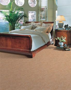 Carpet Va Porter Paint Buy Hardwood Flooring Buy